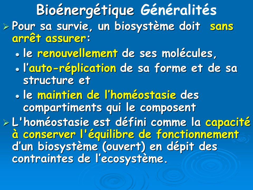 Bioénergétique Bioénergétique Généralités Pour sa survie, un biosystème doit sans arrêt assurer: Pour sa survie, un biosystème doit sans arrêt assurer
