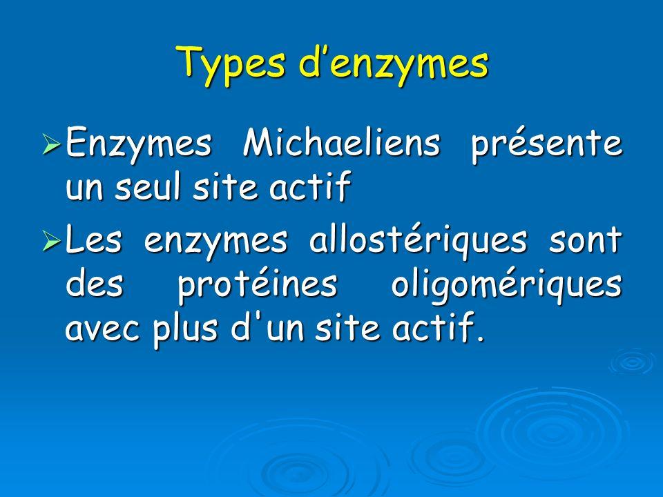 Types denzymes Enzymes Michaeliens présente un seul site actif Enzymes Michaeliens présente un seul site actif Les enzymes allostériques sont des prot