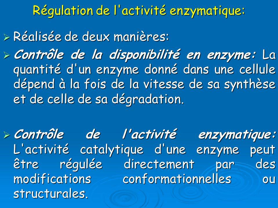 Régulation de l'activité enzymatique: Réalisée de deux manières: Réalisée de deux manières: Contrôle de la disponibilité en enzyme: La quantité d'un e