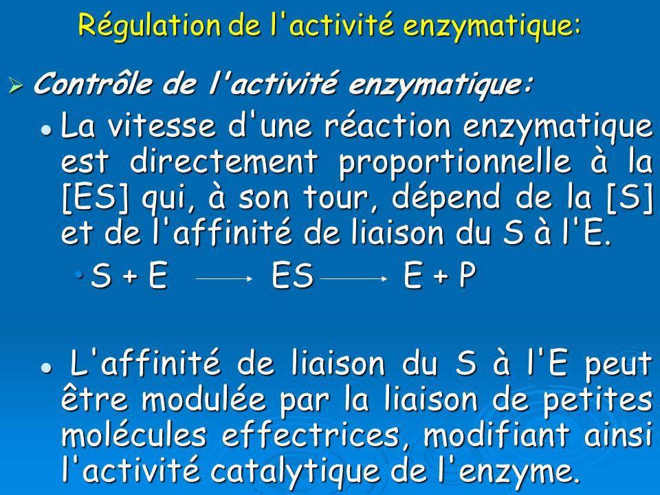 Régulation de l'activité enzymatique: Contrôle de l'activité enzymatique: Contrôle de l'activité enzymatique: La vitesse d'une réaction enzymatique es