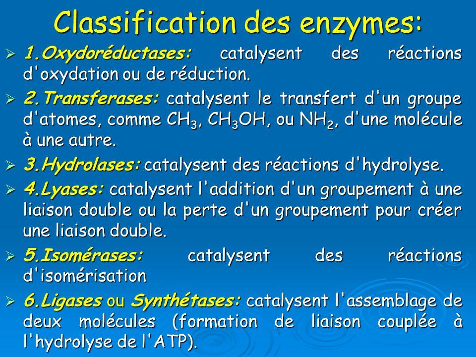 Classification des enzymes: 1.Oxydoréductases: catalysent des réactions d'oxydation ou de réduction. 1.Oxydoréductases: catalysent des réactions d'oxy