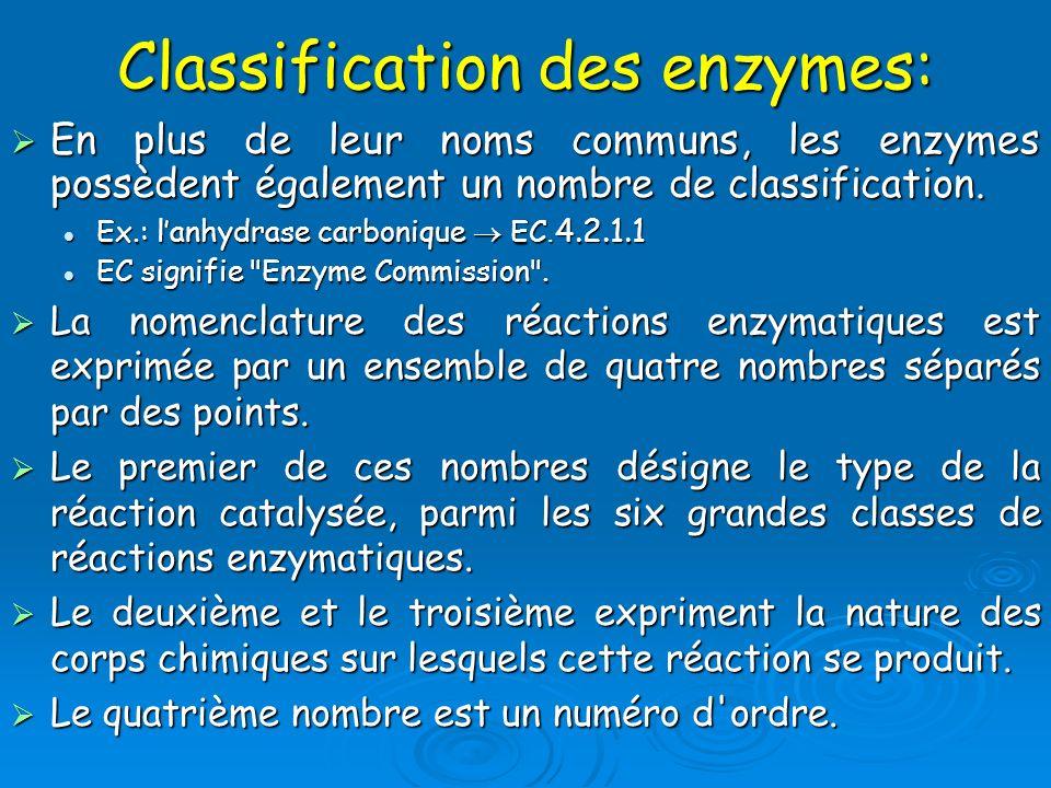 Classification des enzymes: En plus de leur noms communs, les enzymes possèdent également un nombre de classification. En plus de leur noms communs, l