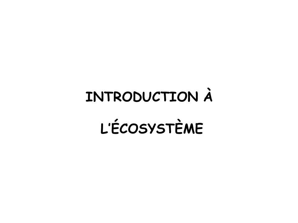 INTRODUCTION À LÉCOSYSTÈME