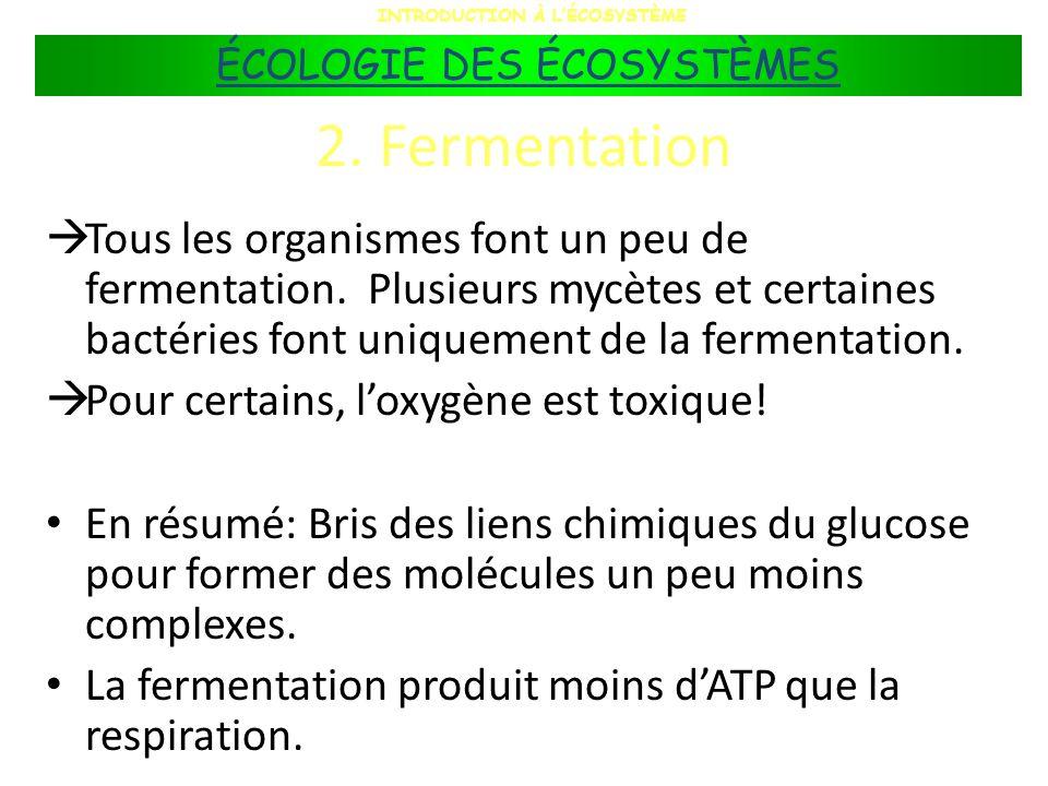2. Fermentation Tous les organismes font un peu de fermentation. Plusieurs mycètes et certaines bactéries font uniquement de la fermentation. Pour cer