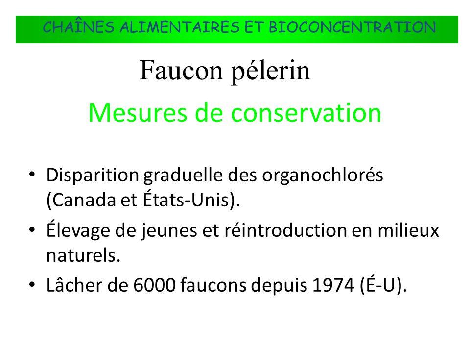FLUX DÉNERGIE DANS LES ÉCOSYSTÈMES Mesures de conservation Disparition graduelle des organochlorés (Canada et États-Unis). Élevage de jeunes et réintr