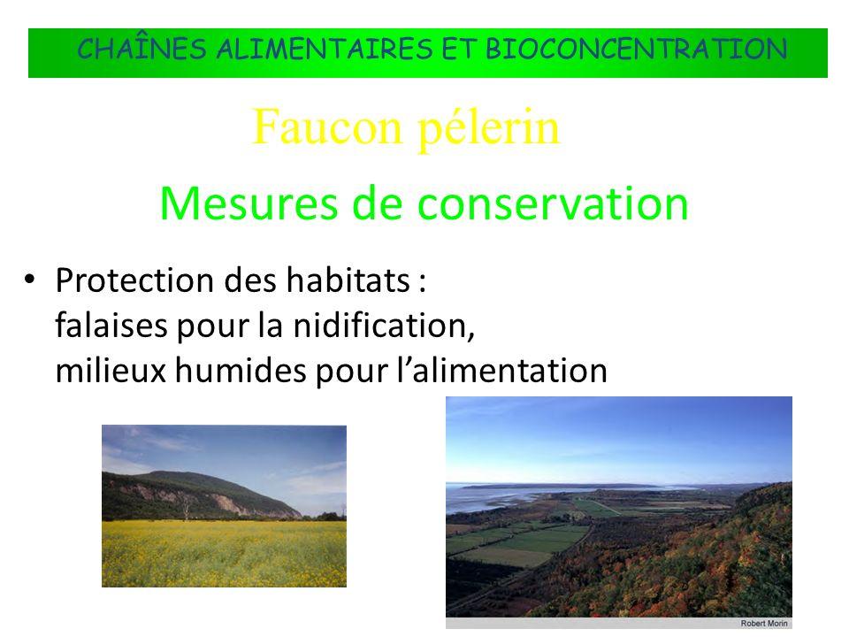 FLUX DÉNERGIE DANS LES ÉCOSYSTÈMES Protection des habitats : falaises pour la nidification, milieux humides pour lalimentation CHAÎNES ALIMENTAIRES ET