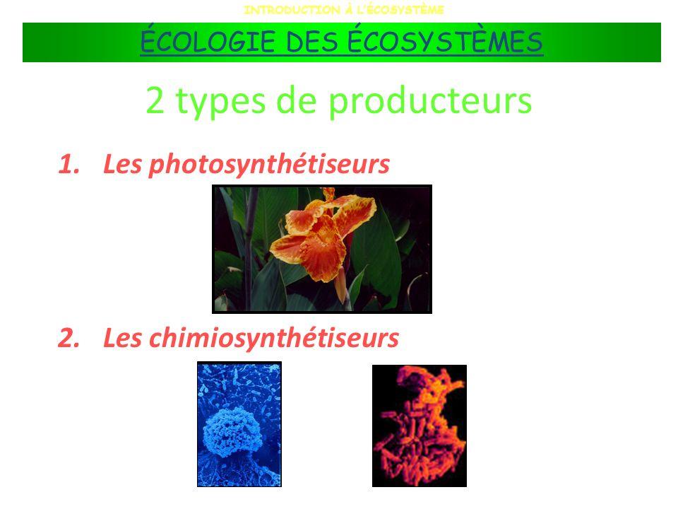 2 types de producteurs 1.Les photosynthétiseurs 2.Les chimiosynthétiseurs INTRODUCTION À LÉCOSYSTÈME ÉCOLOGIE DES ÉCOSYSTÈMES