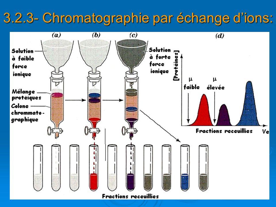 3.2.3- Chromatographie par échange dions: