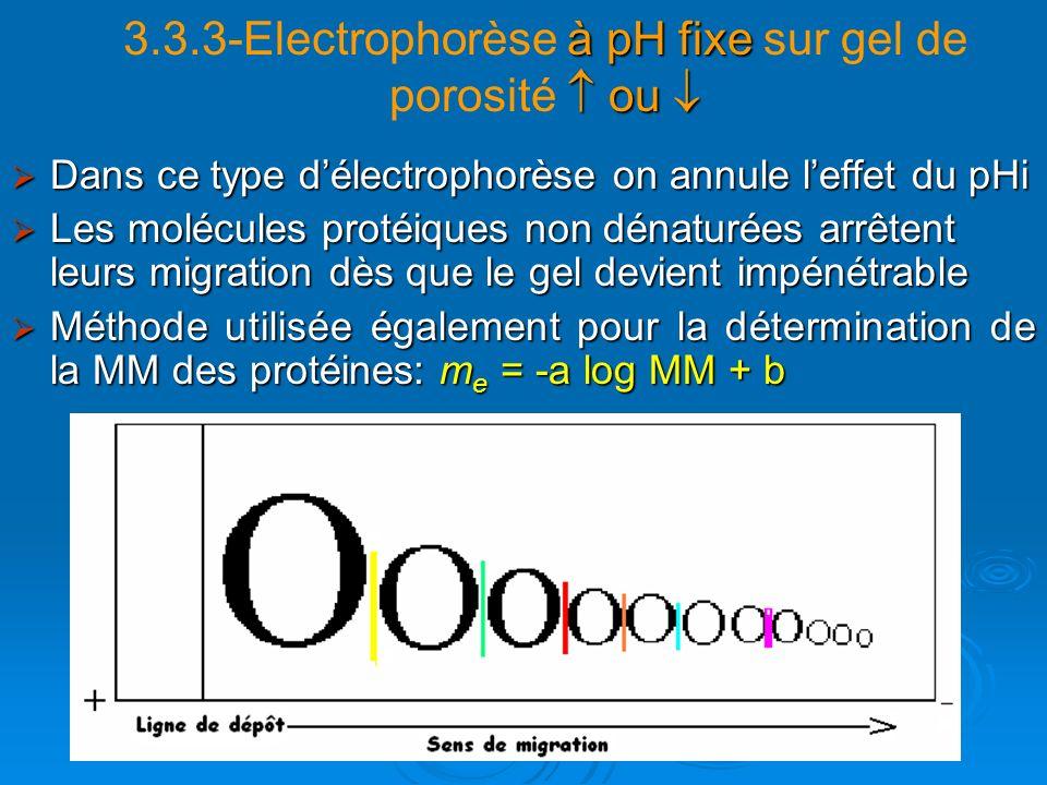 à pH fixe ou 3.3.3-Electrophorèse à pH fixe sur gel de porosité ou Dans ce type délectrophorèse on annule leffet du pHi Dans ce type délectrophorèse o
