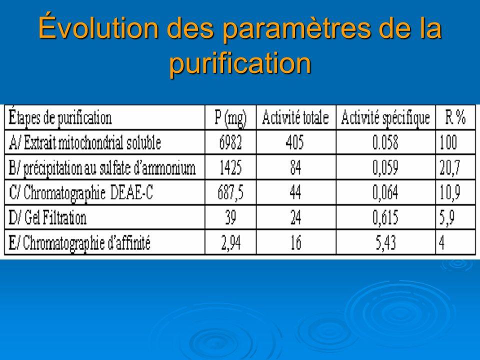 Évolution des paramètres de la purification