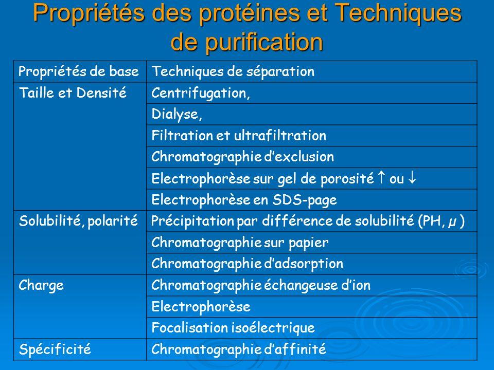 Propriétés des protéines et Techniques de purification Propriétés de baseTechniques de séparation Taille et DensitéCentrifugation, Dialyse, Filtration