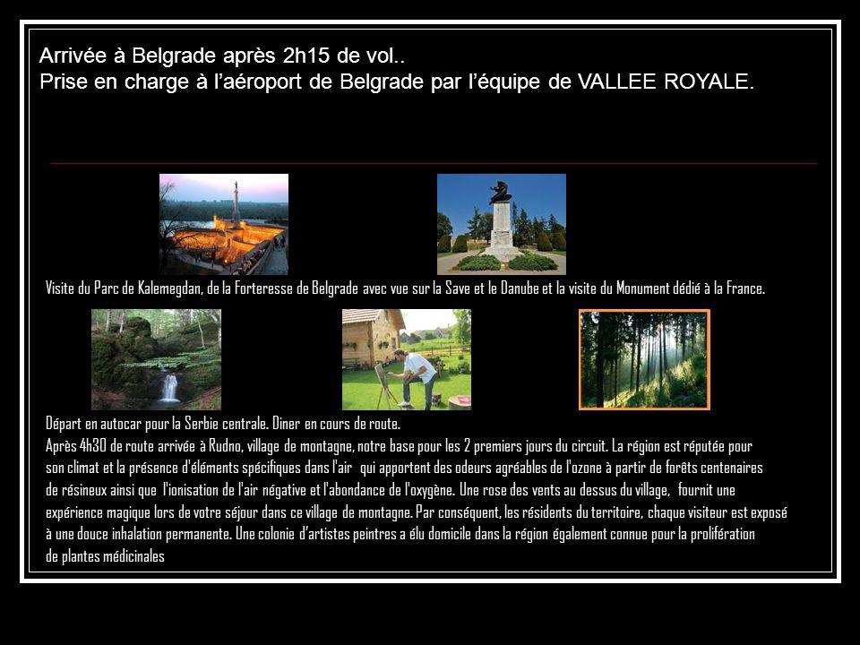 Visite du Parc de Kalemegdan, de la Forteresse de Belgrade avec vue sur la Save et le Danube et la visite du Monument dédié à la France. Départ en aut