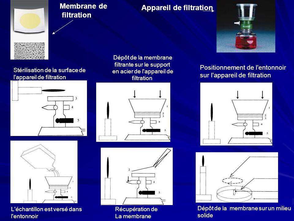 Dépôt de la membrane filtrante sur le support en acier de l'appareil de filtration Positionnement de l'entonnoir sur l'appareil de filtration L'échant