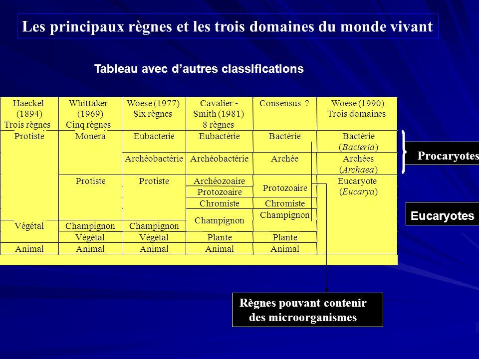 Les principaux règnes et les trois domaines du monde vivant Procaryotes Règnes pouvant contenir des microorganismes Tableau avec dautres classificatio