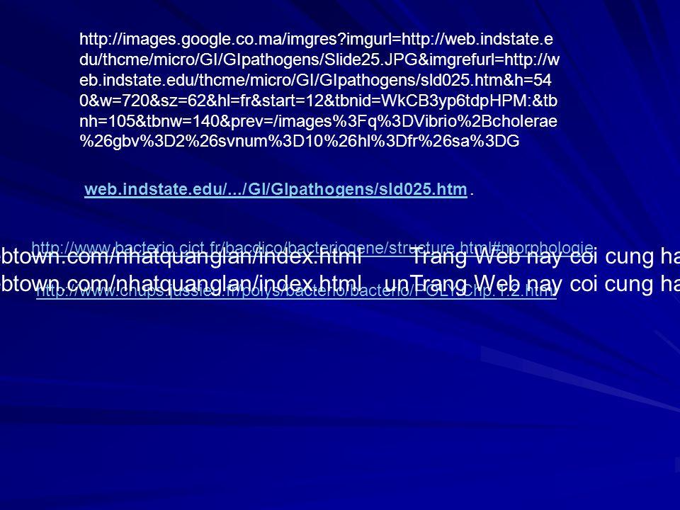 http://images.google.co.ma/imgres?imgurl=http://web.indstate.e du/thcme/micro/GI/GIpathogens/Slide25.JPG&imgrefurl=http://w eb.indstate.edu/thcme/micr