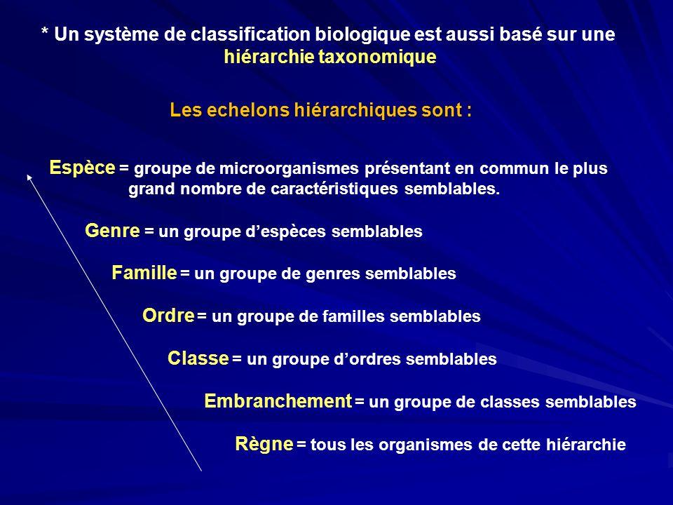 * Un système de classification biologique est aussi basé sur une hiérarchie taxonomique Les echelons hiérarchiques sont : Espèce = groupe de microorga