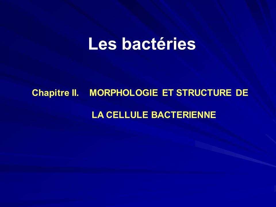 Chapitre II. MORPHOLOGIE ET STRUCTURE DE LA CELLULE BACTERIENNE Les bactéries