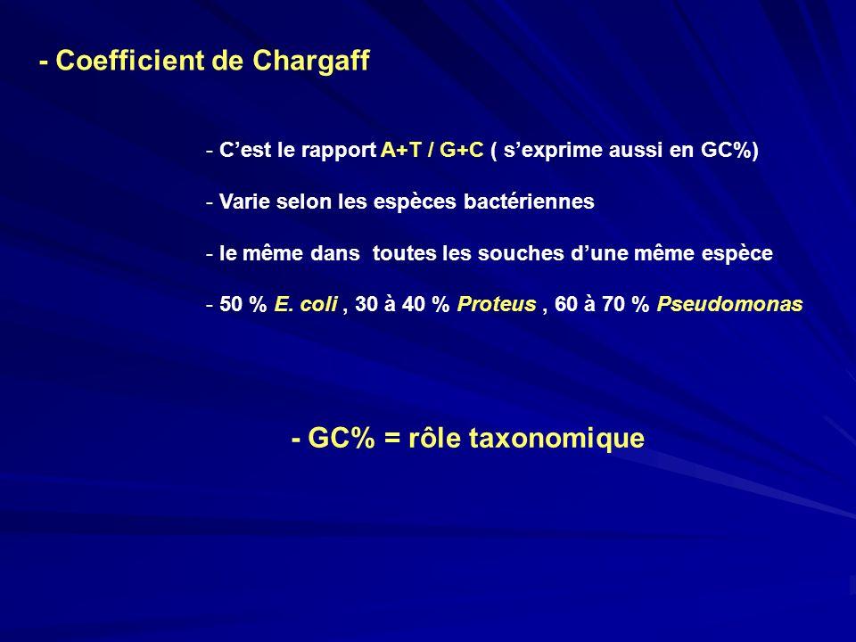 - Coefficient de Chargaff - Cest le rapport A+T / G+C ( sexprime aussi en GC%) - Varie selon les espèces bactériennes - le même dans toutes les souche