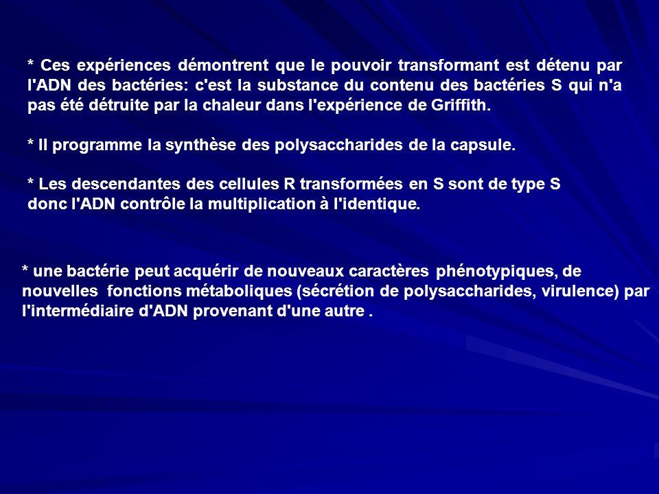 * Ces expériences démontrent que le pouvoir transformant est détenu par l'ADN des bactéries: c'est la substance du contenu des bactéries S qui n'a pas