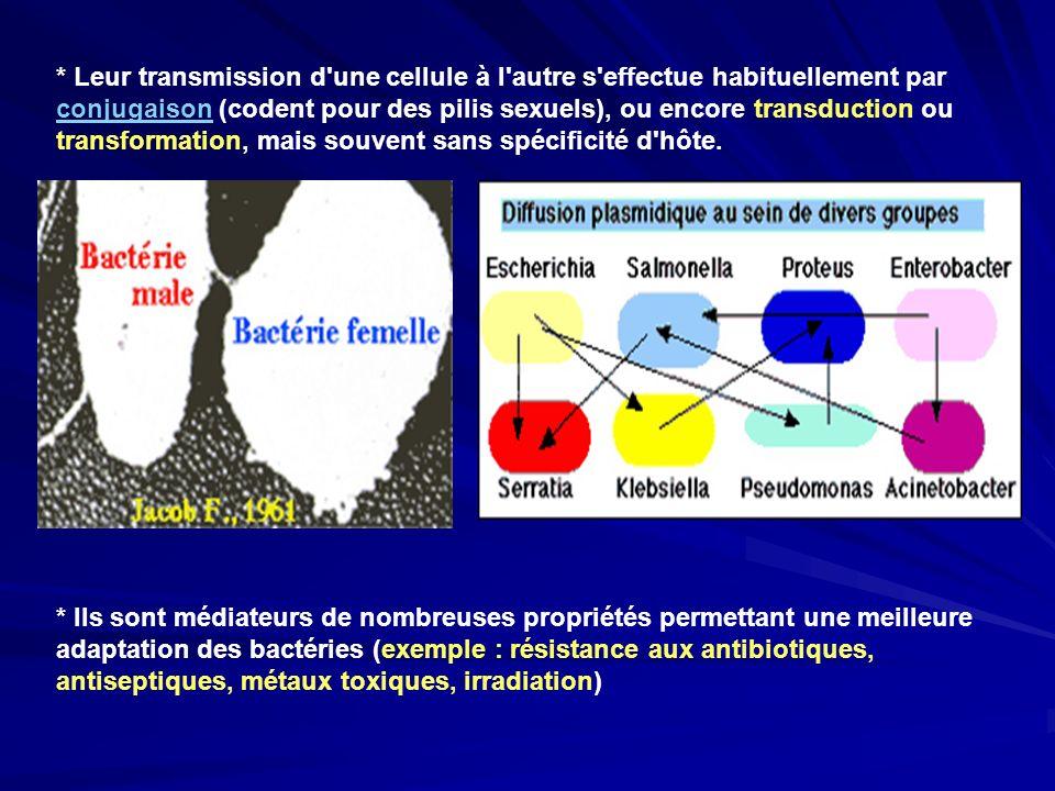 * Leur transmission d'une cellule à l'autre s'effectue habituellement par conjugaison (codent pour des pilis sexuels), ou encore transduction ou trans