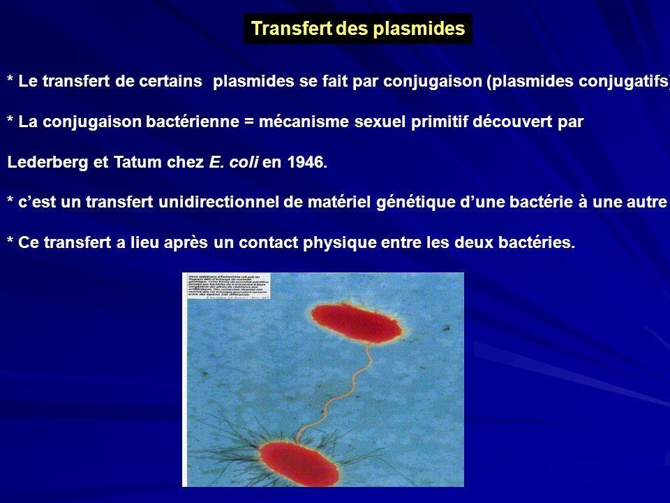 Transfert des plasmides * Le transfert de certains plasmides se fait par conjugaison (plasmides conjugatifs) * La conjugaison bactérienne = mécanisme