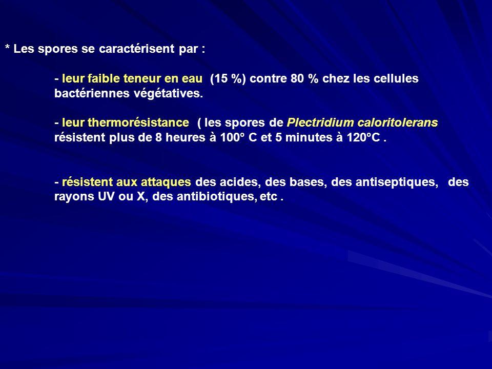 * Les spores se caractérisent par : - leur faible teneur en eau (15 %) contre 80 % chez les cellules bactériennes végétatives. - leur thermorésistance