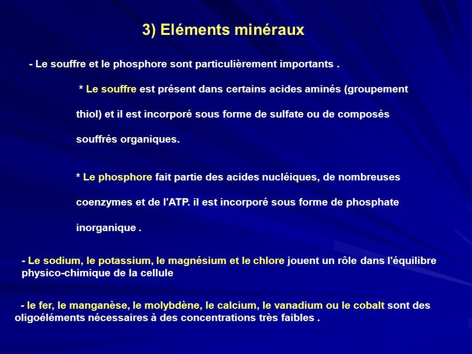 3) Eléments minéraux - Le souffre et le phosphore sont particulièrement importants. * Le souffre est présent dans certains acides aminés (groupement t