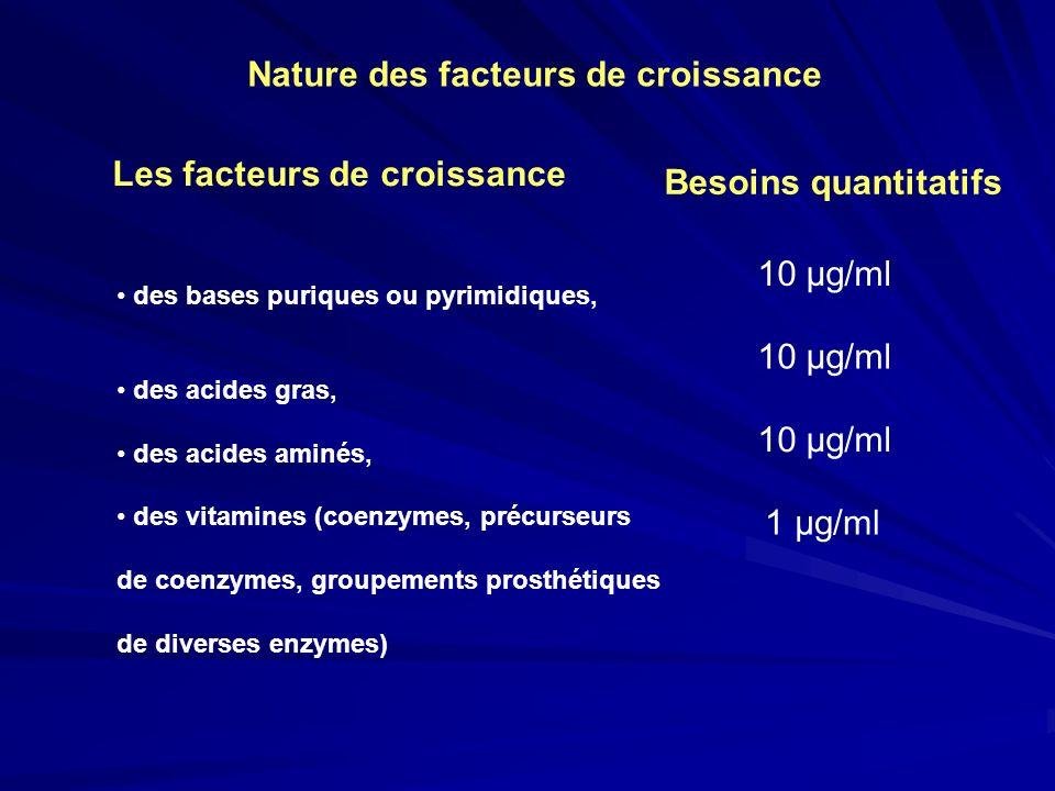 des bases puriques ou pyrimidiques, des acides gras, des acides aminés, des vitamines (coenzymes, précurseurs de coenzymes, groupements prosthétiques