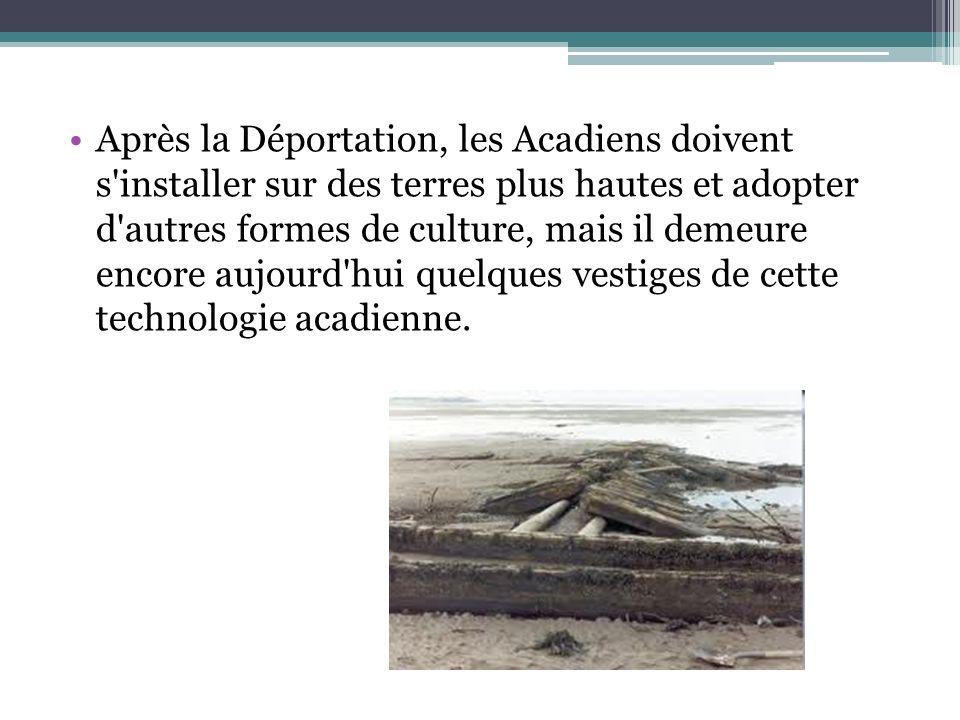 Après la Déportation, les Acadiens doivent s'installer sur des terres plus hautes et adopter d'autres formes de culture, mais il demeure encore aujour