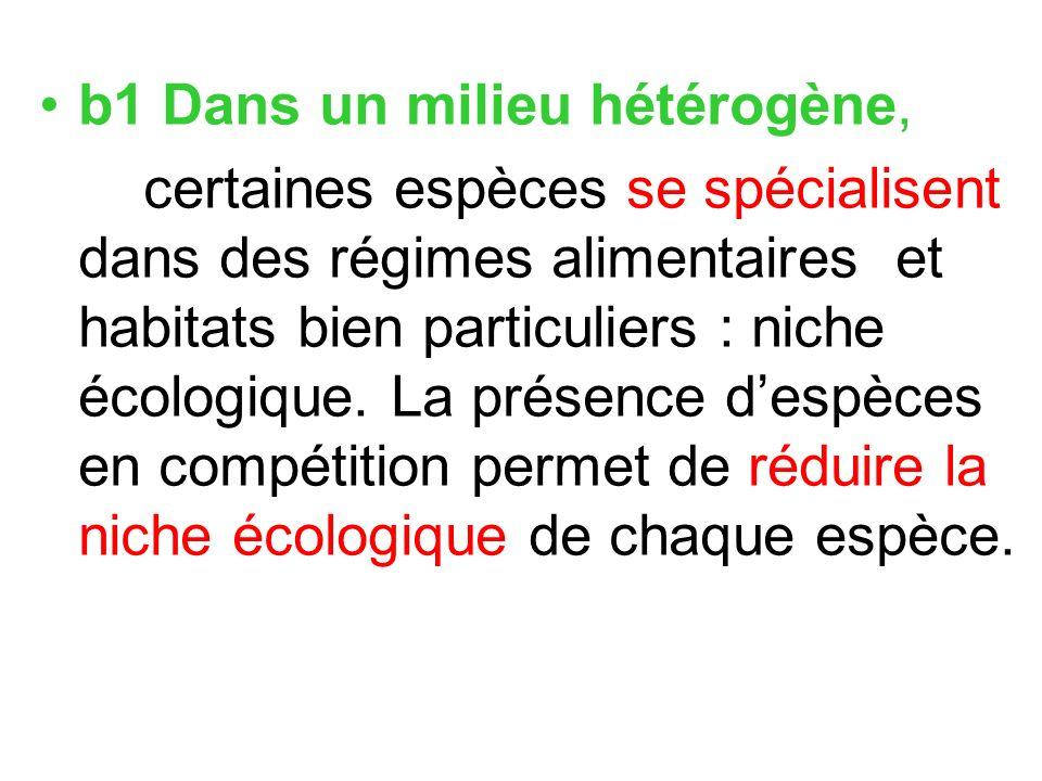 b1 Dans un milieu hétérogène, certaines espèces se spécialisent dans des régimes alimentaires et habitats bien particuliers : niche écologique. La pré