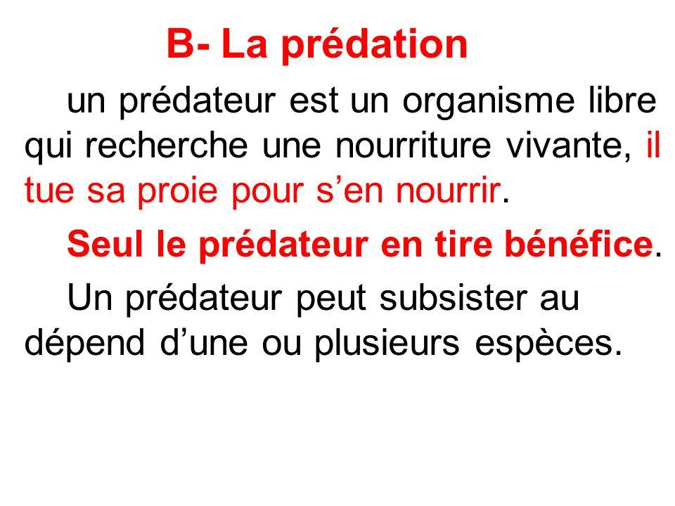 B- La prédation un prédateur est un organisme libre qui recherche une nourriture vivante, il tue sa proie pour sen nourrir. Seul le prédateur en tire