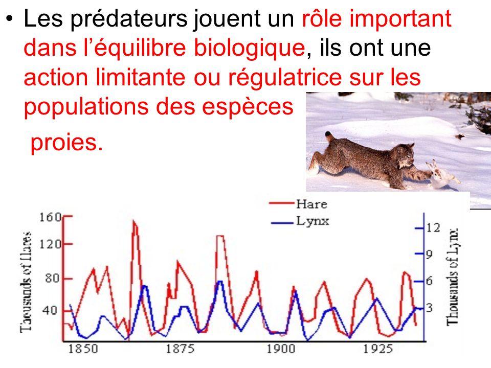 Les prédateurs jouent un rôle important dans léquilibre biologique, ils ont une action limitante ou régulatrice sur les populations des espèces proies