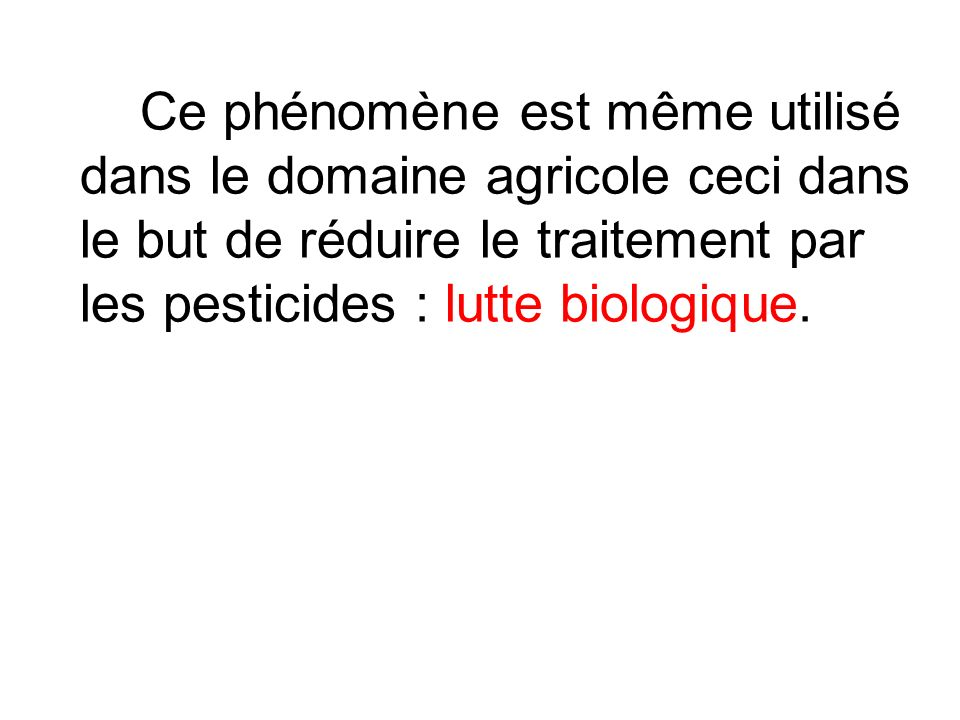 Exemple de prédateur la coccinelle utilisé pour réduire les populations proies de cochenilles, pucerons et acariens.