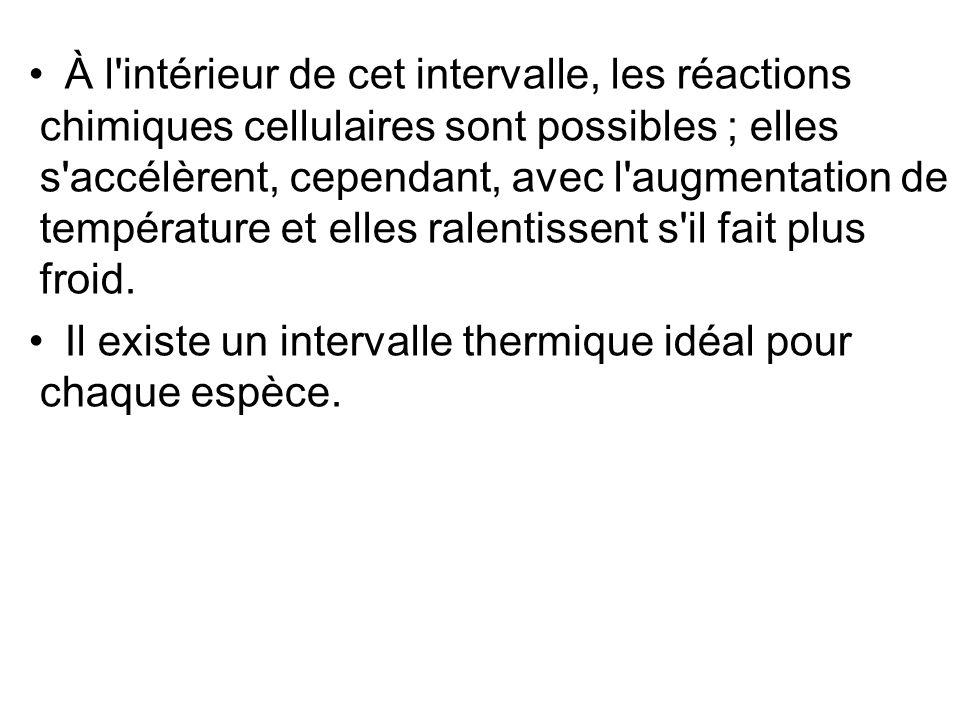 À l'intérieur de cet intervalle, les réactions chimiques cellulaires sont possibles ; elles s'accélèrent, cependant, avec l'augmentation de températur