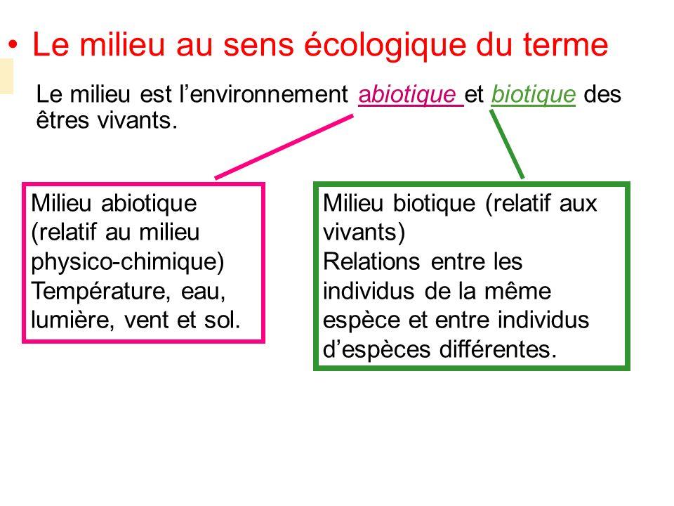 Le milieu est lenvironnement abiotique et biotique des êtres vivants. Milieu biotique (relatif aux vivants) Relations entre les individus de la même e