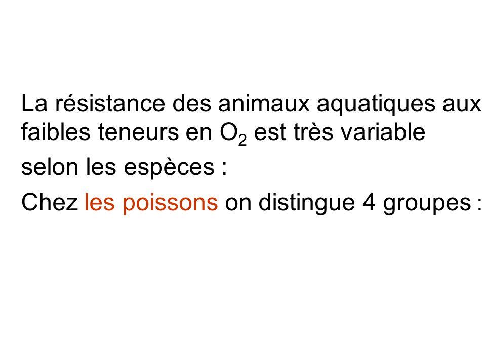 La résistance des animaux aquatiques aux faibles teneurs en O 2 est très variable selon les espèces : Chez les poissons on distingue 4 groupes :