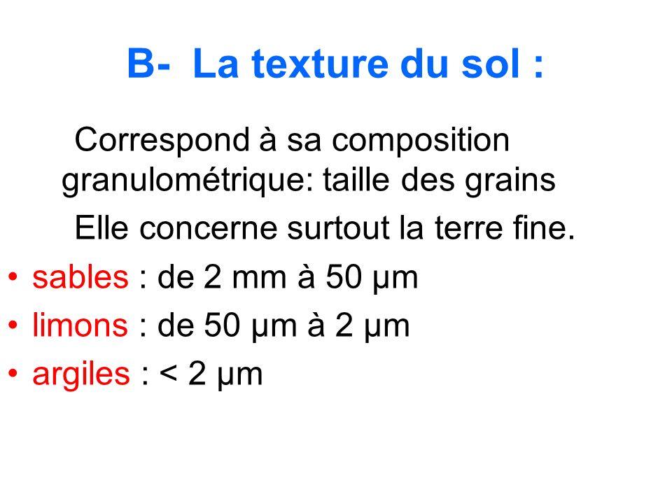 B- La texture du sol : Correspond à sa composition granulométrique: taille des grains Elle concerne surtout la terre fine. sables : de 2 mm à 50 µm li