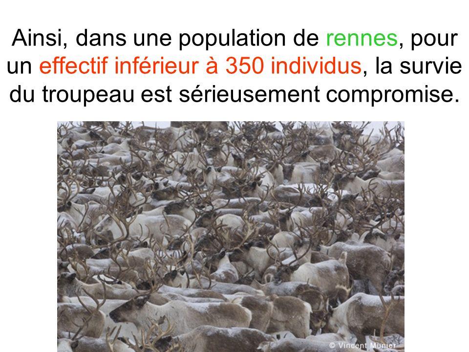 Ainsi, dans une population de rennes, pour un effectif inférieur à 350 individus, la survie du troupeau est sérieusement compromise.