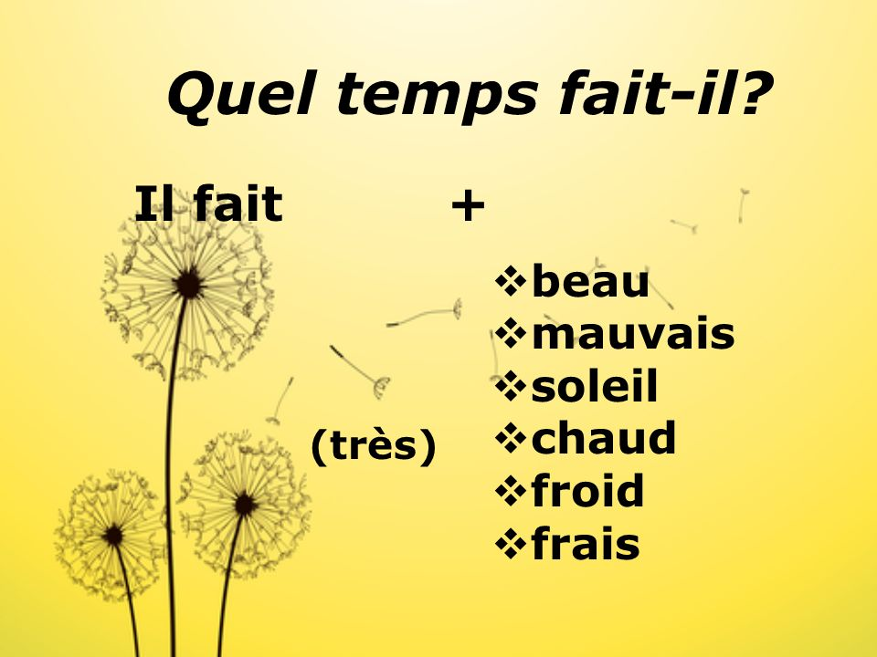 Quel temps fait-il? What is the weather like ?