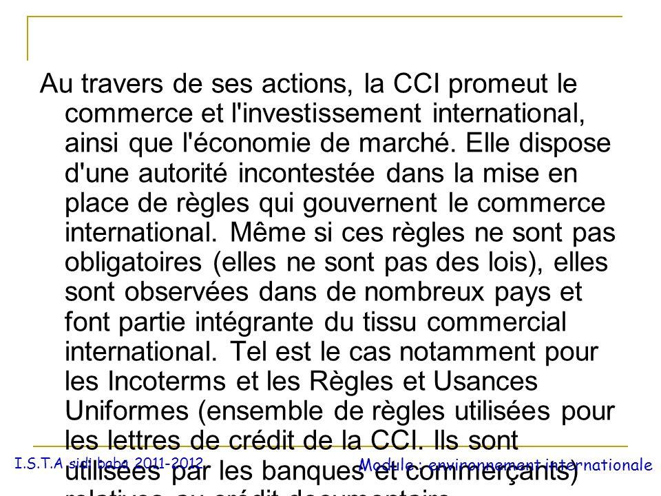 Au travers de ses actions, la CCI promeut le commerce et l'investissement international, ainsi que l'économie de marché. Elle dispose d'une autorité i