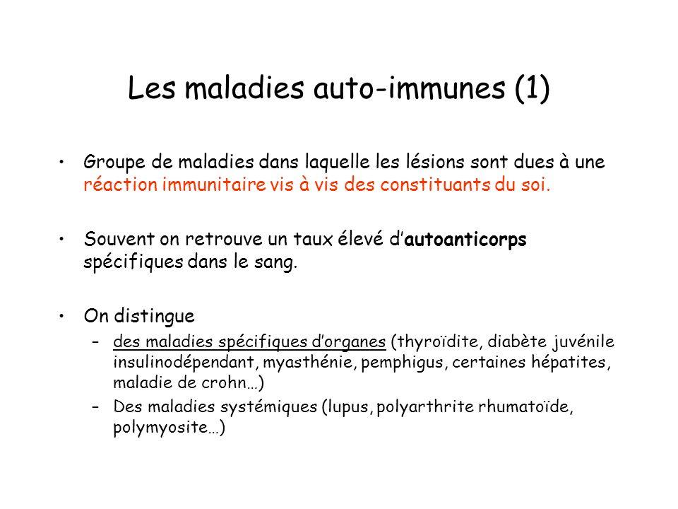 Les maladies auto-immunes (1) Groupe de maladies dans laquelle les lésions sont dues à une réaction immunitaire vis à vis des constituants du soi. Sou