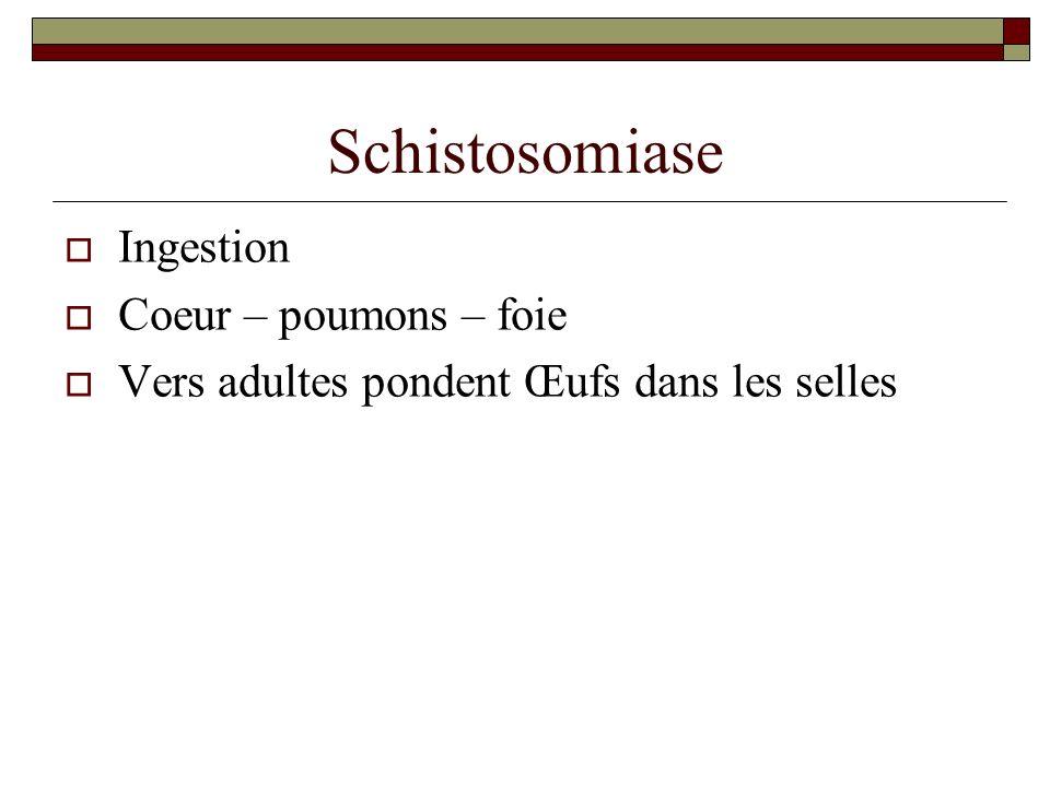 Schistosomiase Ingestion Coeur – poumons – foie Vers adultes pondent Œufs dans les selles
