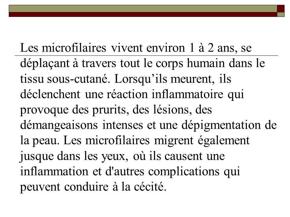 Les microfilaires vivent environ 1 à 2 ans, se déplaçant à travers tout le corps humain dans le tissu sous-cutané. Lorsquils meurent, ils déclenchent