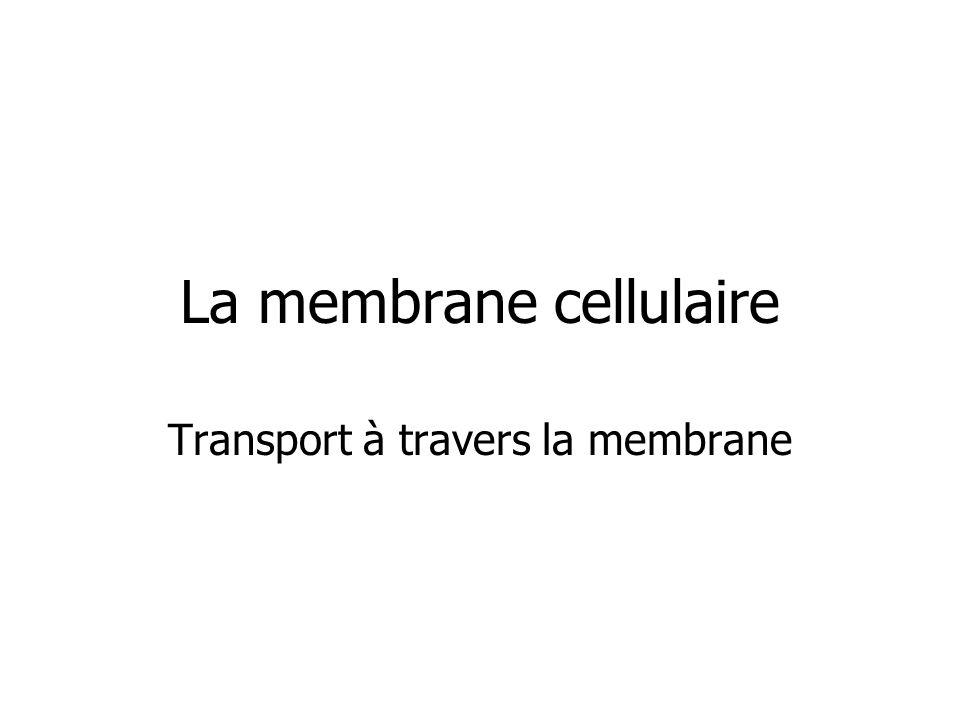 La membrane cellulaire Transport à travers la membrane