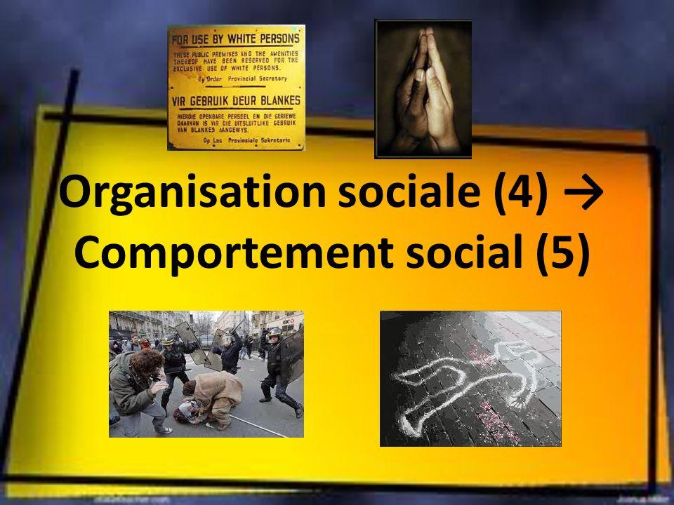 Organisation sociale (4) Comportement social (5)