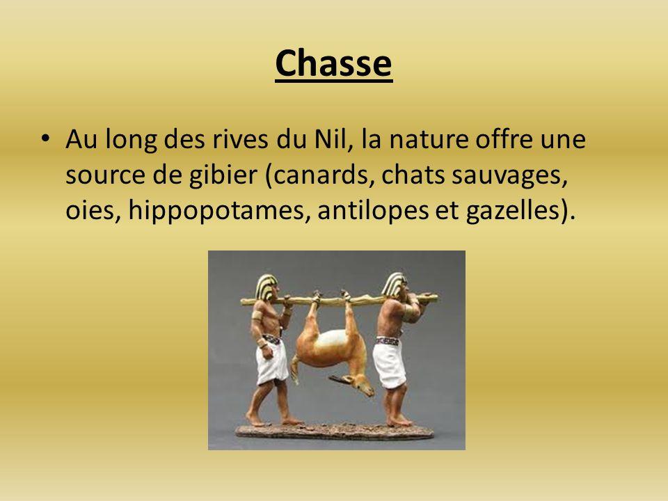 Chasse Au long des rives du Nil, la nature offre une source de gibier (canards, chats sauvages, oies, hippopotames, antilopes et gazelles).