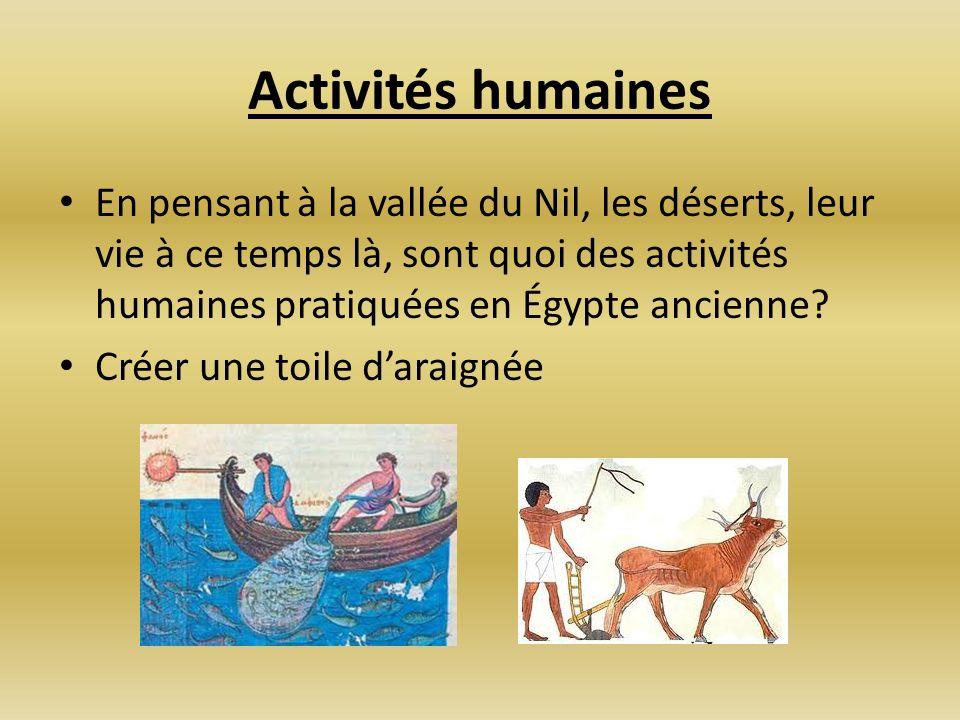 Activités humaines En pensant à la vallée du Nil, les déserts, leur vie à ce temps là, sont quoi des activités humaines pratiquées en Égypte ancienne?