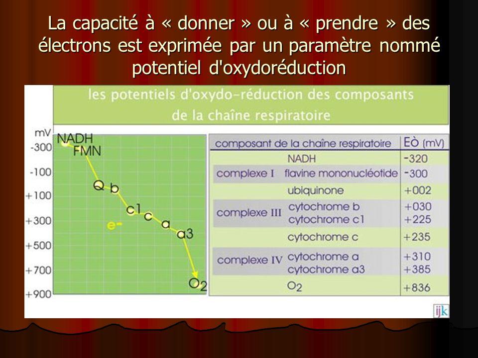 La capacité à « donner » ou à « prendre » des électrons est exprimée par un paramètre nommé potentiel d'oxydoréduction