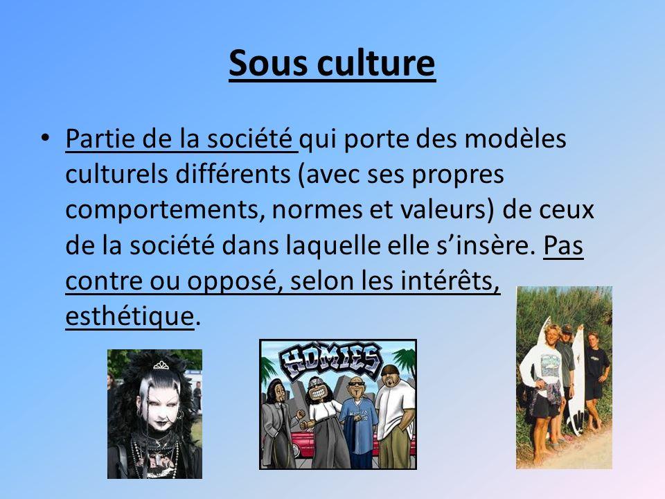 Sous culture Partie de la société qui porte des modèles culturels différents (avec ses propres comportements, normes et valeurs) de ceux de la société dans laquelle elle sinsère.