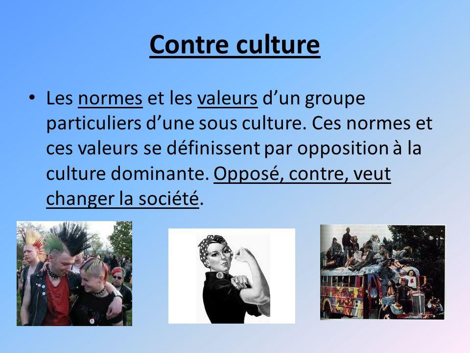 Contre culture Les normes et les valeurs dun groupe particuliers dune sous culture.